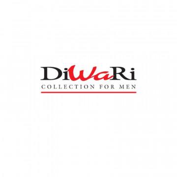 DiWaRi